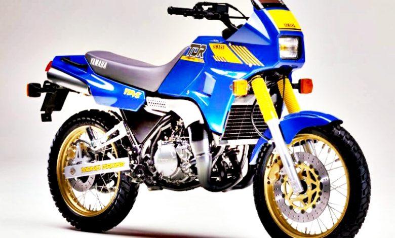 2021 Yamaha TDR 250 Adventure Dual-Sport